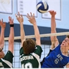 D10 sr. boys volleyball: Guelph CVI vs. Ross