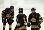 HUNTSVILLE OTTERS LAST 2015-2016 REGULAR SEASON HOME GAME
