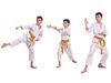 Choosing a martial art