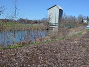 Pollinating gardens planned for Port Robinson