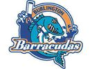 Rookie goalie blanks Barrie to give Burlington Barracudas first win