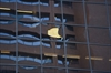 VIDEO: Panel of glass falls from Hamilton  high-rise