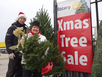 Alliston Rotary Club selling Christmas trees