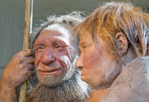 Humans didn't outsmart the Neanderthals. We just outlasted them