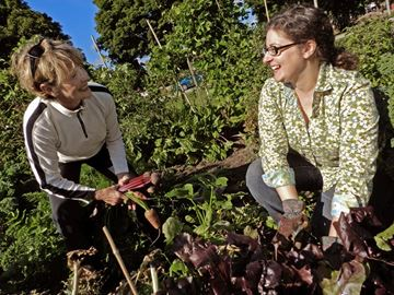 Benefits of community gardening