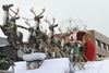 Thousands line Oakville's downtown to take in the 67th annual Santa Claus Parade