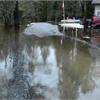 FLOODING SPRINGDALE PARK