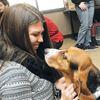 Pets visit Durham College/UOIT