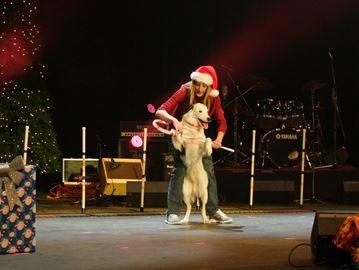 Doggie Dance