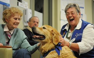 Therapy Dogs Return to Hospital