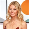 Gwyneth Paltrow's relationship is 'great'-Image1