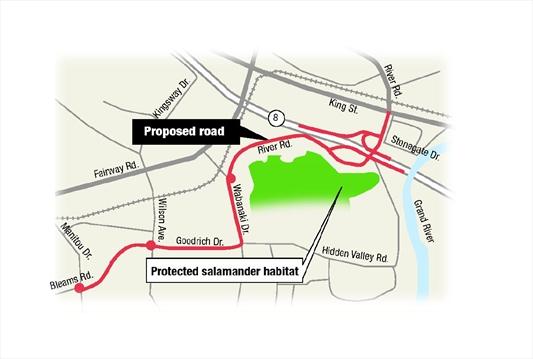 salamanders fail to derail hidden valley road