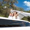 Reliable limousine service ensures your wedding goes off without a hitch