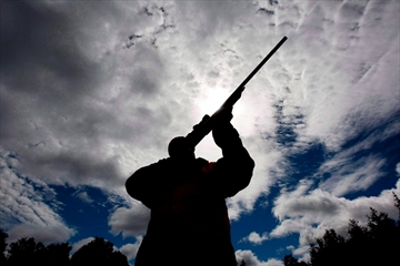 Do away with gun-registry data, Quebec told-Image1