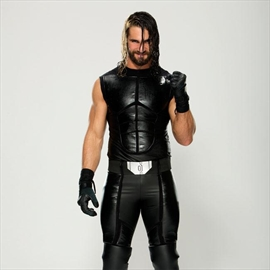 Seth Rollins' girlfriend fired from WWE-Image1