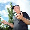 Bad apple crop in Clarington