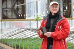 Oak trees to return to Vimy Ridge thanks, in part, to Flamborough nursery