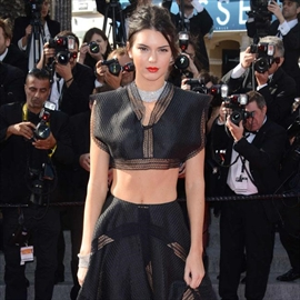 Kendall Jenner 'snubbed by Hollywood film-makers'-Image1