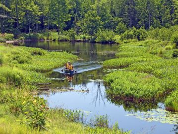 Muskoka recognized for its concern for the environment