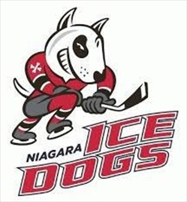 IceDogs schedule exhibition game in Port Colborne