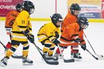 OMHA supports cross-ice/half-ice