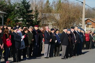 Remembrance Day in Sydenham