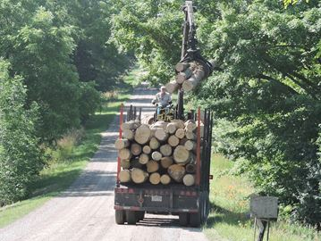 Timber harvest from Uniondale-area farm