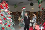 Tweed Festival of Trees continues to grow and enchant