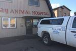 Humane society searches Skyway Animal Hospital