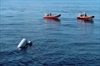 Aid group fears hundreds of migrants drowned off Libya-Image5