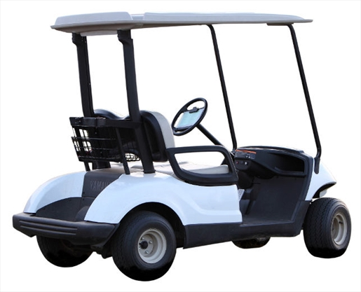 Birdie Golf Carts Appealing To Omb