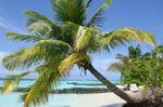 Take a beach break