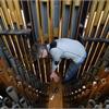 Organ Tuning