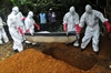 Ebola: Africa's image takes a hit-Image1