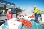 Kiwanis Lobsterfest 2015