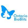 Tiny Marsh Bioblitz to take place June 25