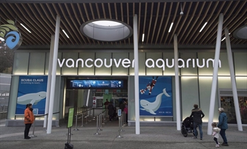 Vancouver Aquarium files civil claim suing city and park board over cetacean ban