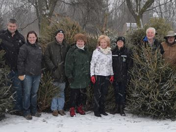 Recycled Christmas trees to cool Bronte Creek