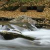 OUR NIAGARA: Shooting the Rapids
