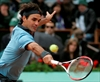 Roger Federer pulls out of French Open-Image1