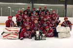 Oshawa Novice AE hockey team