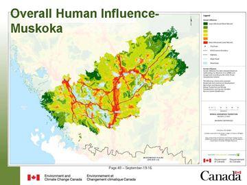 Human influence in Muskoka