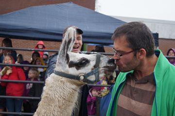 Nate Booth, Educational Assistant at South River Public School, gave a kiss to Lorenzo the Llama in early October for the benefit of the Terry Fox Cancer Foundation.