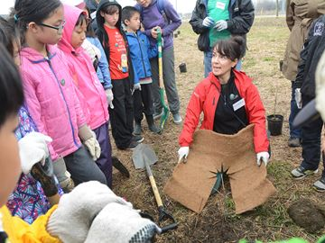 Tree planting advice