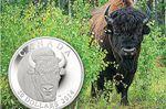 Royal Canadian Mint picks Penetanguishene photographer's shot