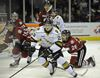 London Knights defeat Guelph Storm 4-1