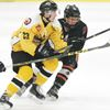 Nick Sribny, Uxbridge Bruins