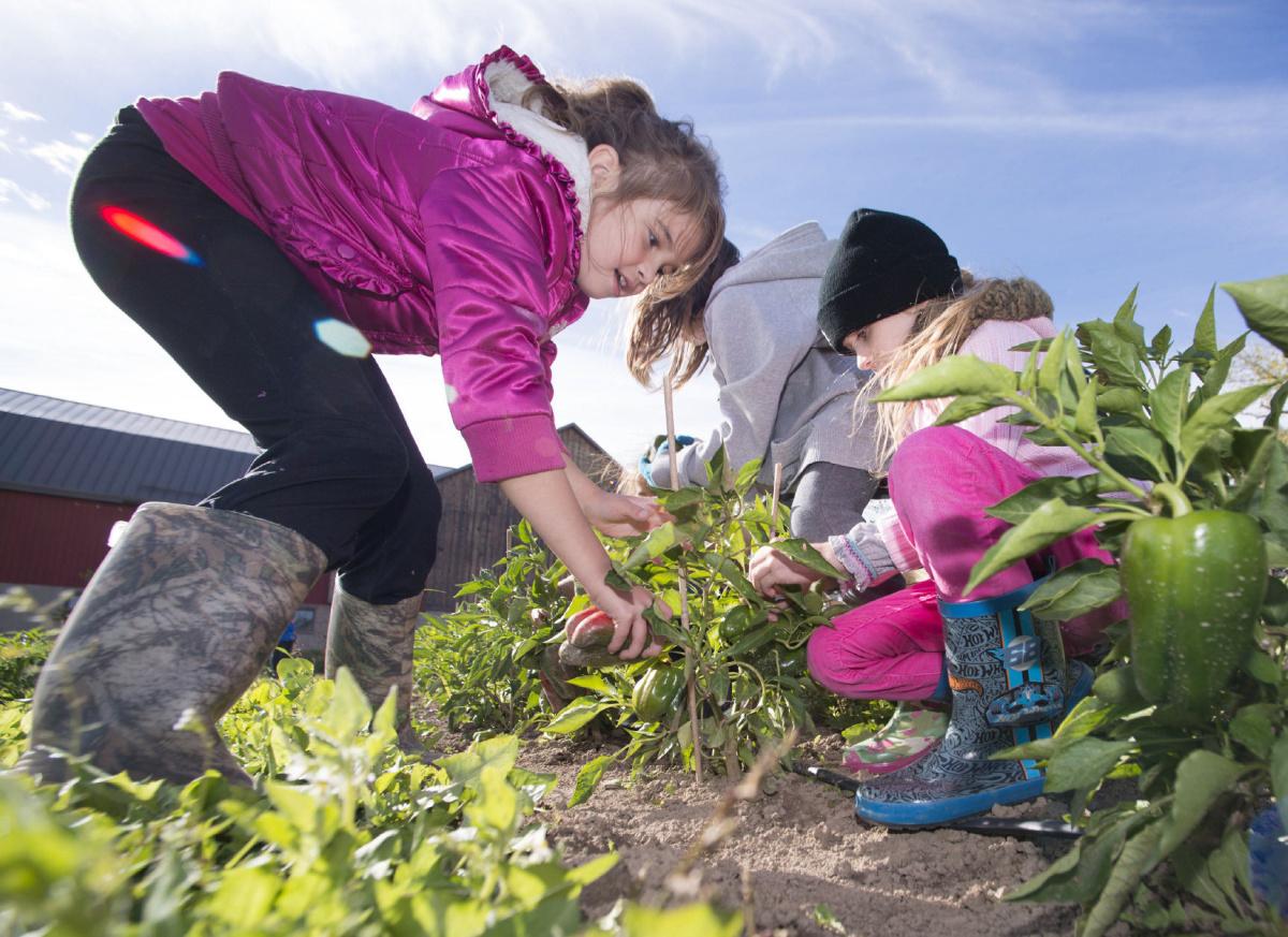 Field Trip City Children Turn To Garden Growers