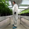On the Job with a medicinal marijuana producer