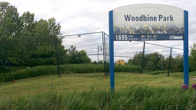 Woodbine Park Electric Island